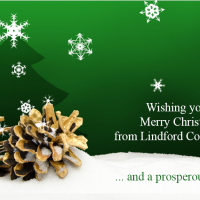 Christmas Wishes from Lindford Consulting